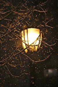 Snowy lamp